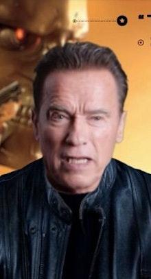 Deep Arnold Schwarzenegger