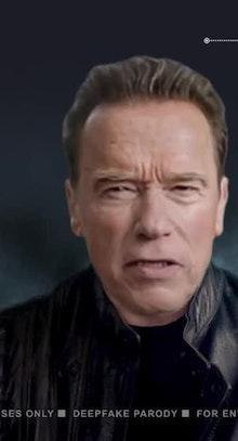 Deep Fake Arnold Schwarzenegger