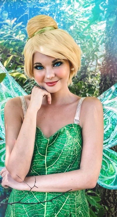 Tinkerbell The Fairy